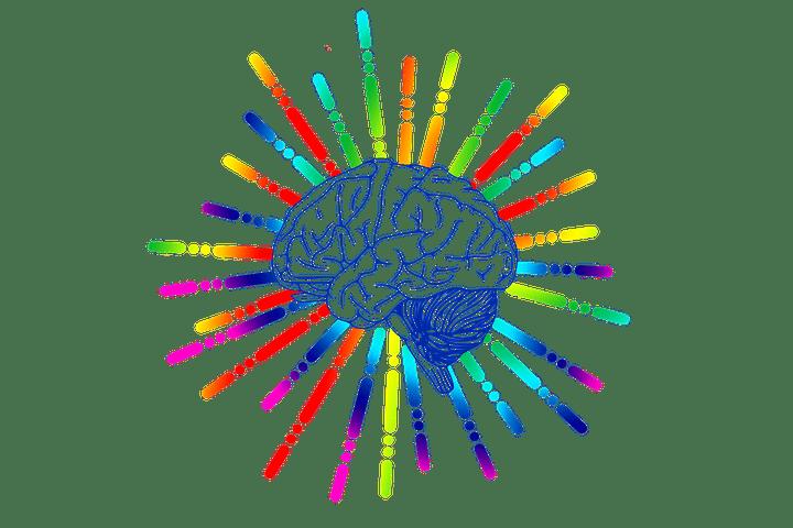 Consultation au cabinet Issy'Psy : la remédiation cognitive