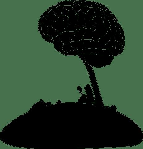 Consultation au cabinet Issy'Psy : la rééducation neurovisuelle